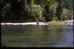 North Umpqua River Series: fisherman.