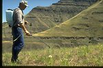 Larry Aschenbrenner of the Forest Service spaying yellow starthistle in the Hells Canyon National Recreation area.