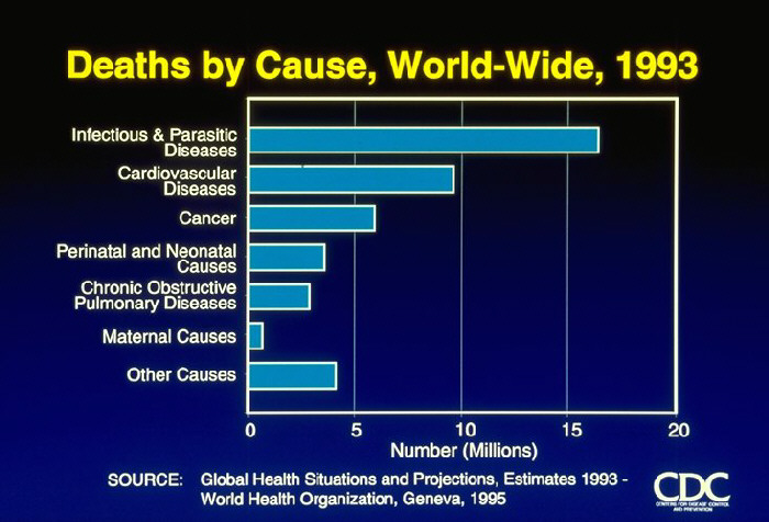 Deaths by Cause, World-Wide, 1993 (graph)