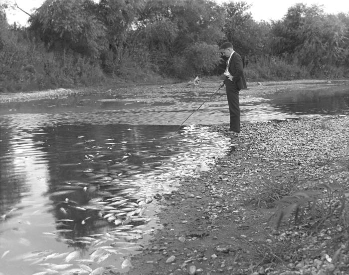 This historic photograph was taken on August 30, 1935, for the purpose of documenting a fish kill. A large number of fish were killed when i
