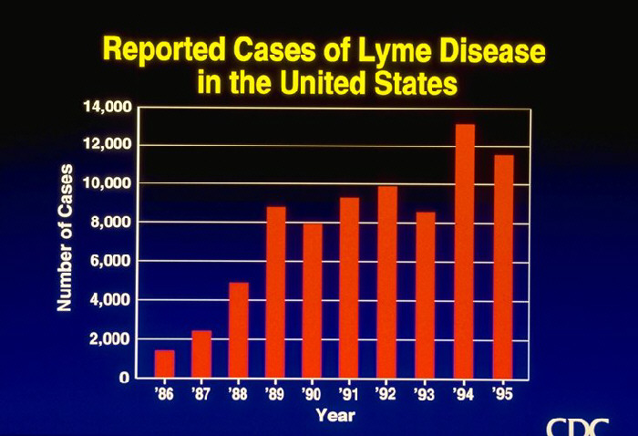 Reported Cases of Lyme Disease in the United States (graph)