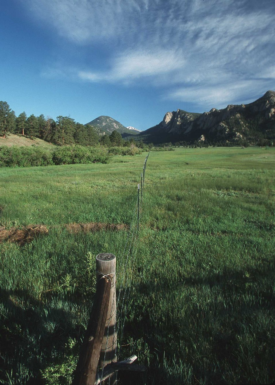 Riparian Pasture-Spanish Peaks area, CO.