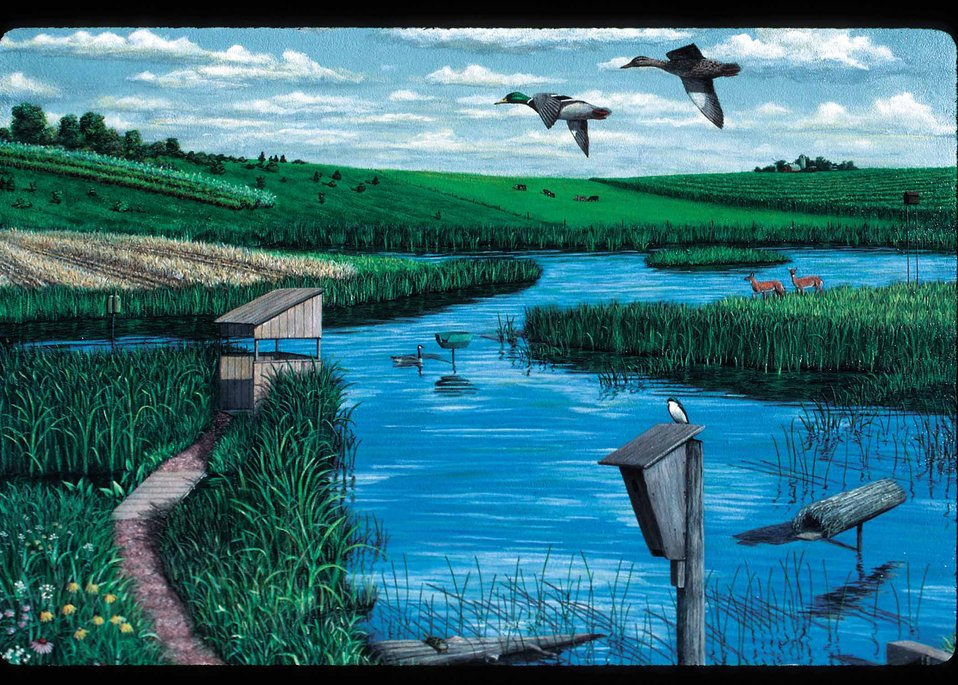 Artist depiction of numerous improvements that can be made to restored wetlands to enhance the wetlands for benefits to wildlife.