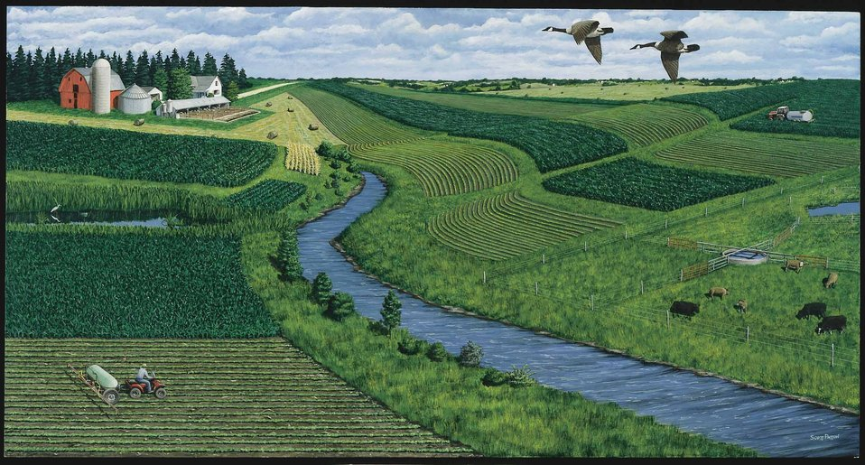 Art depiction of land protected with conservation buffers and other practices.