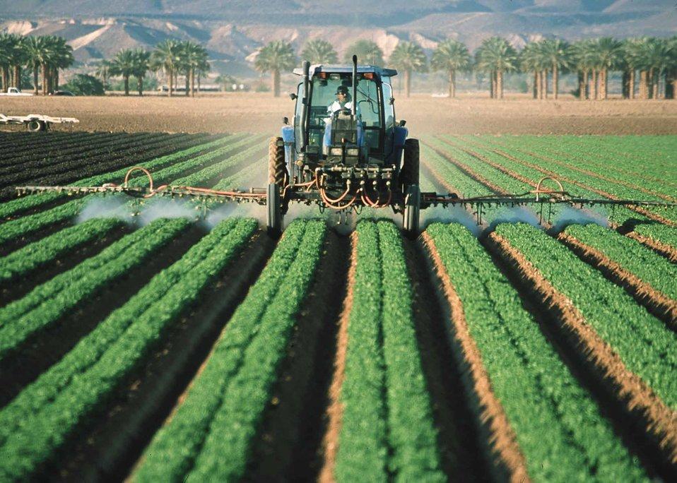 Pesticide application on leaf lettuce in Yuma, Az.