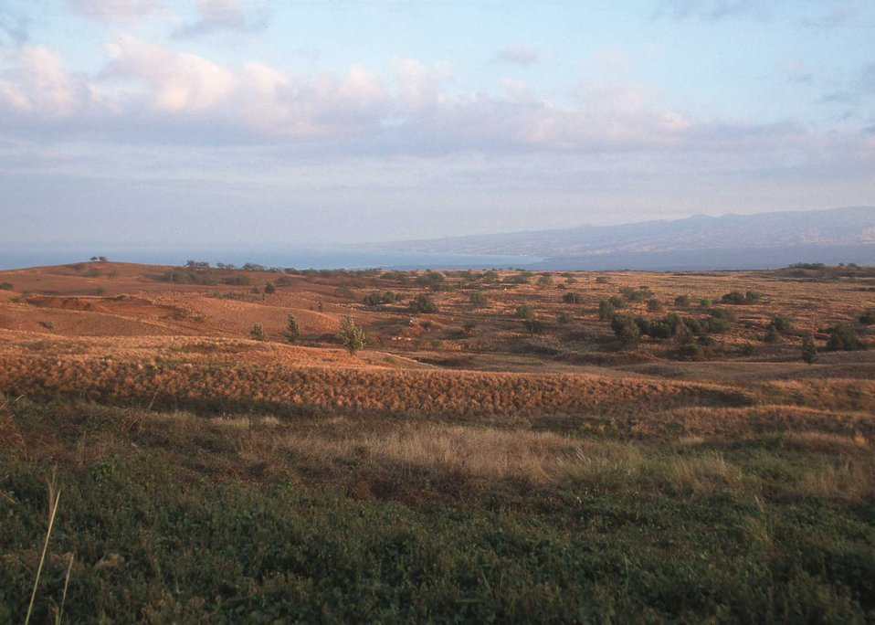 Rangeland in Hawaii beginning to show the effects of drought.