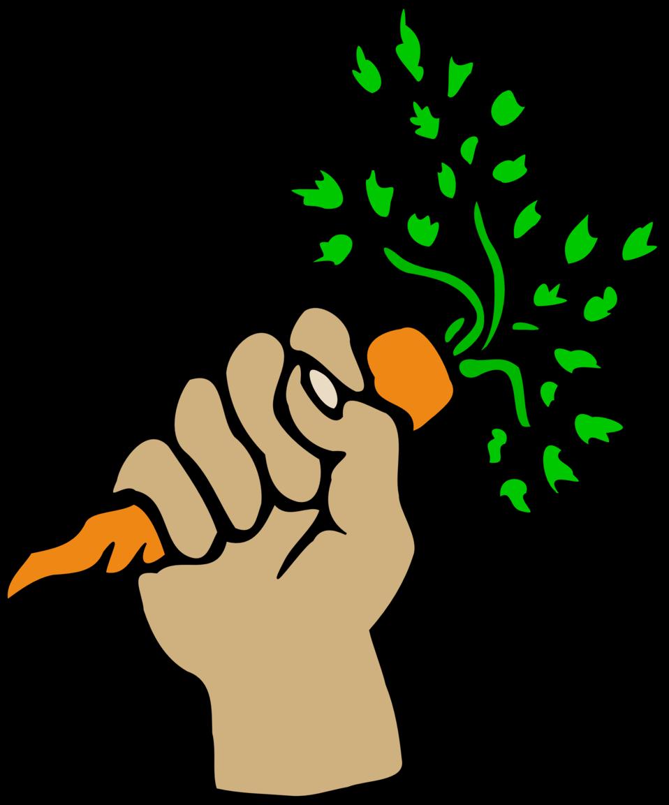 Hand holding carrot