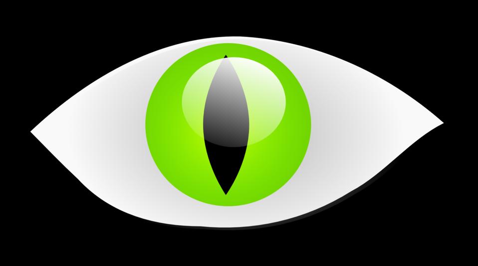 Illustration of a cat eye