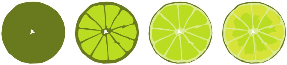 Illustration of citrus fruit slices