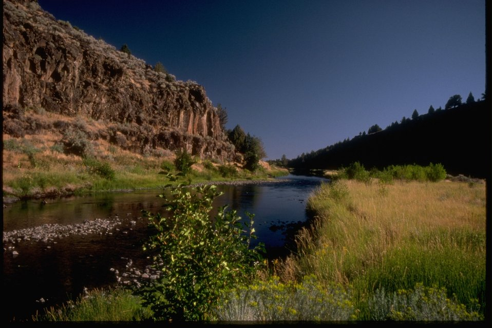A scenic picture of a riparian area along a river and the cliffs above the river.