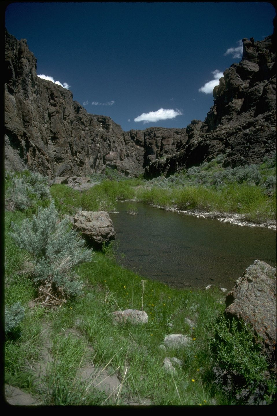 The Upper West Little Owyhee Wilderness Study Area.  OR 3-173