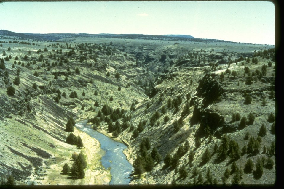 Aerial picture of Blitzen Gorge and the Blitzen River.  OR 2-86E