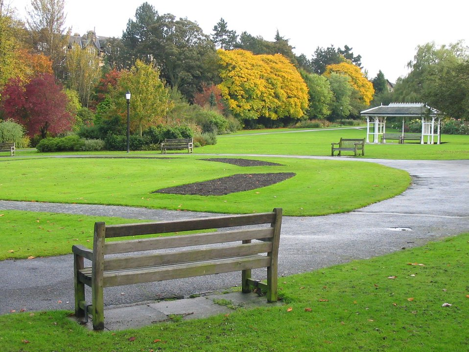 Bench in valley gardens