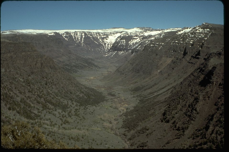 High Steens Wilderness Study Area looking into Big Indian Gorge from South Loop Road near Rooster Combs.  OR 2-85F