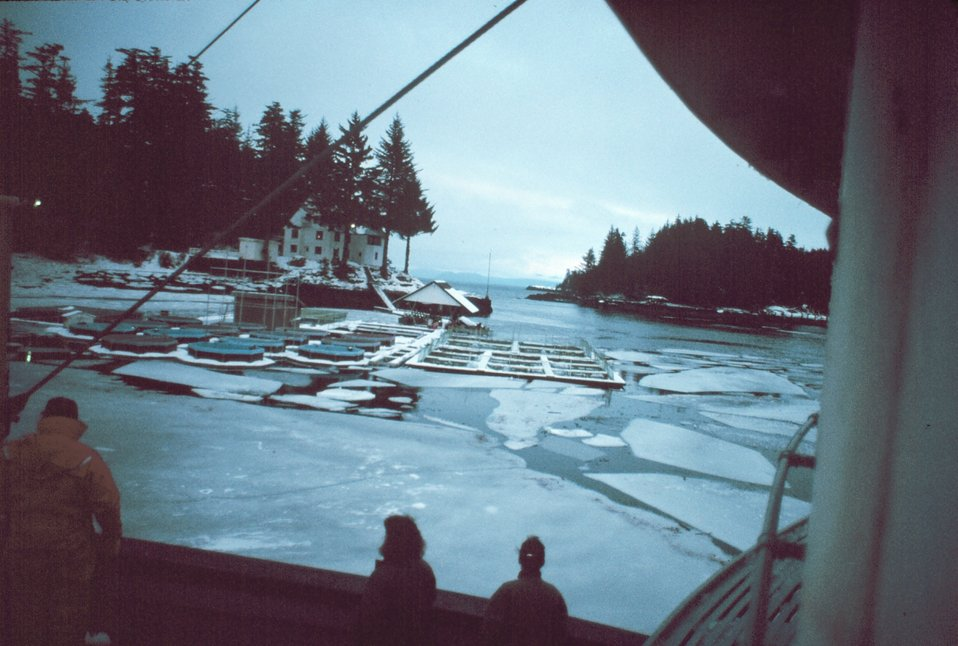 The salmon pens at Little Port Walter in the winter