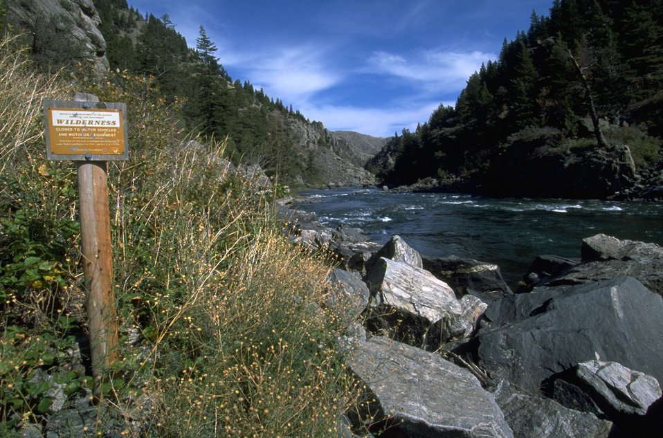 Looking downstream of the Madison River