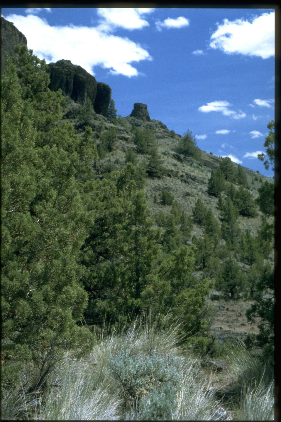 Chimney Rock, as viewed from the trail below.