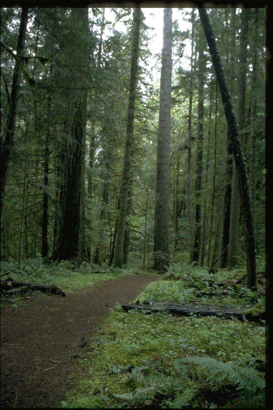 Recreation trail.