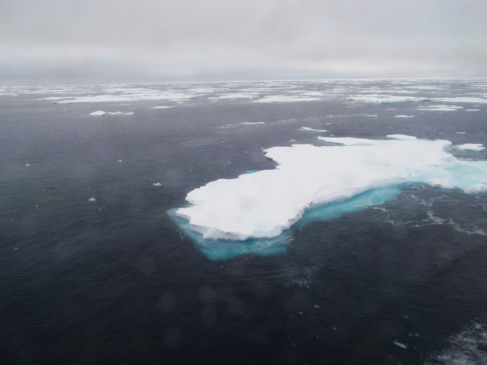 Floes of thick multi-year ice