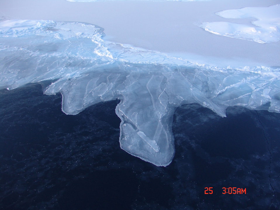 Rafting nilas forming grey-white ice as it continues to grow in thickness.  The dark ice to the bottom is thin nilas with frost flowers showing as white specks.