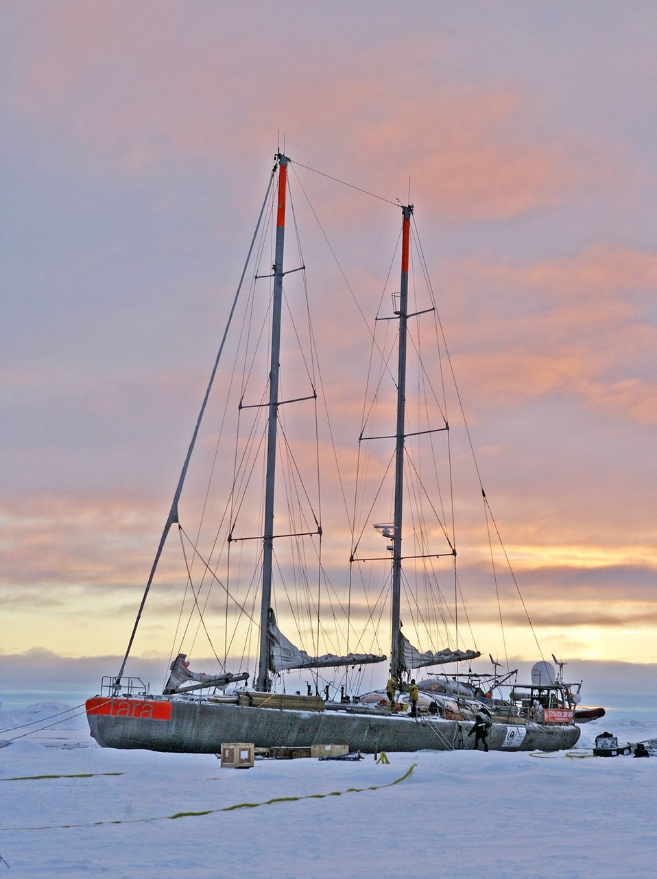 The French sailing vessel TARA which will intentionally be frozen in the ice for two years in order to conduct Arctic climate and oceanographic studies.  See: http://www.naturalsciences.org/education/arctic/