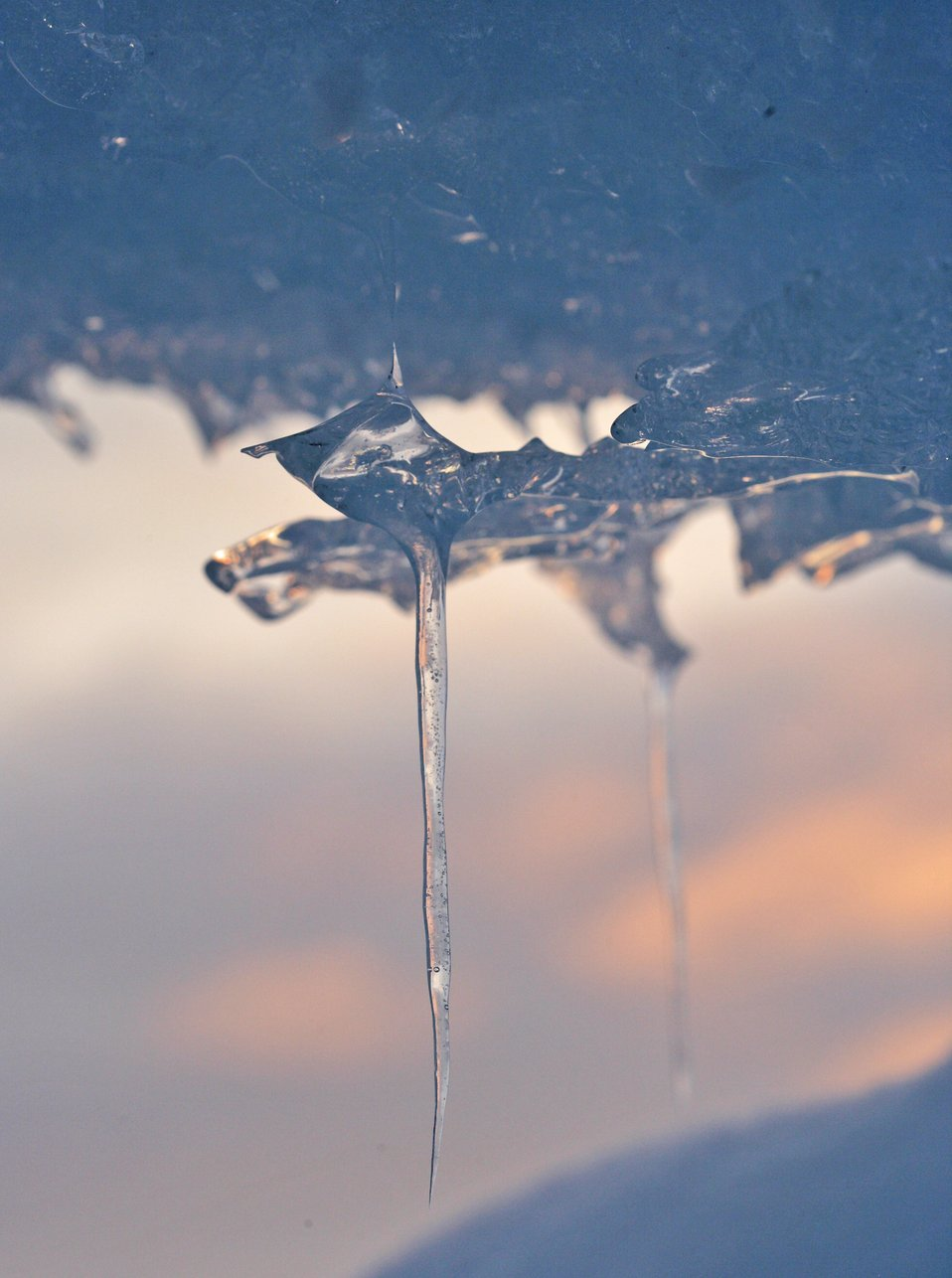 An icicle. See: http://www.naturalsciences.org/education/arctic/