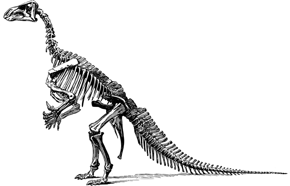 Iganodon