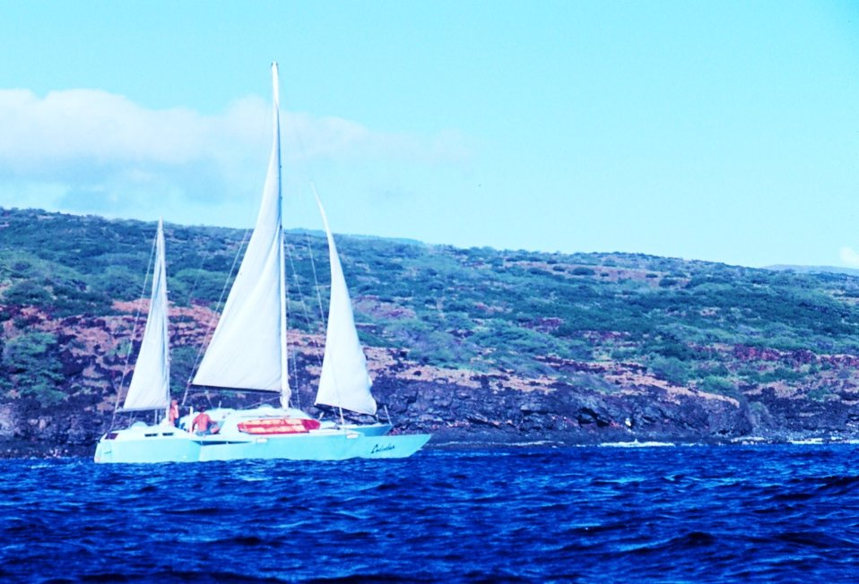 Catamaran sailing off Hawaiian island