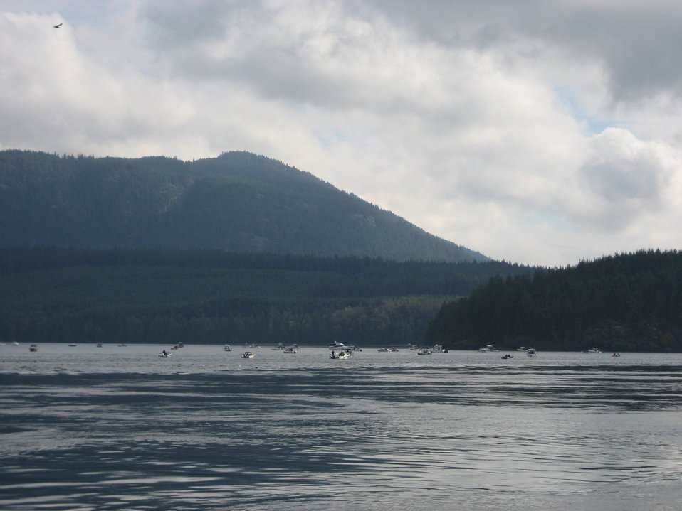 Salmon fishing along the Inside Passage.