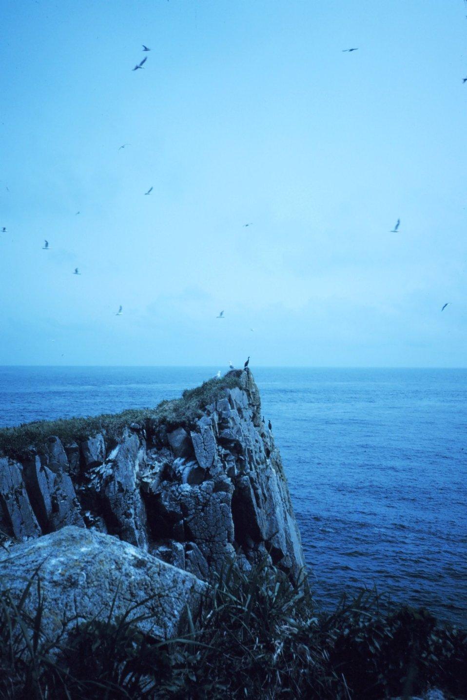 Promontory on Sutwik Island in Shelikof Strait.