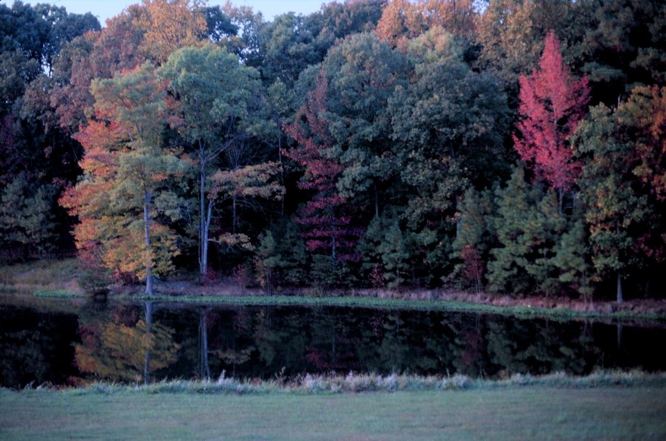 Fall colors grace St. Johns Pond, a tidal pond off of the St. Mary's River
