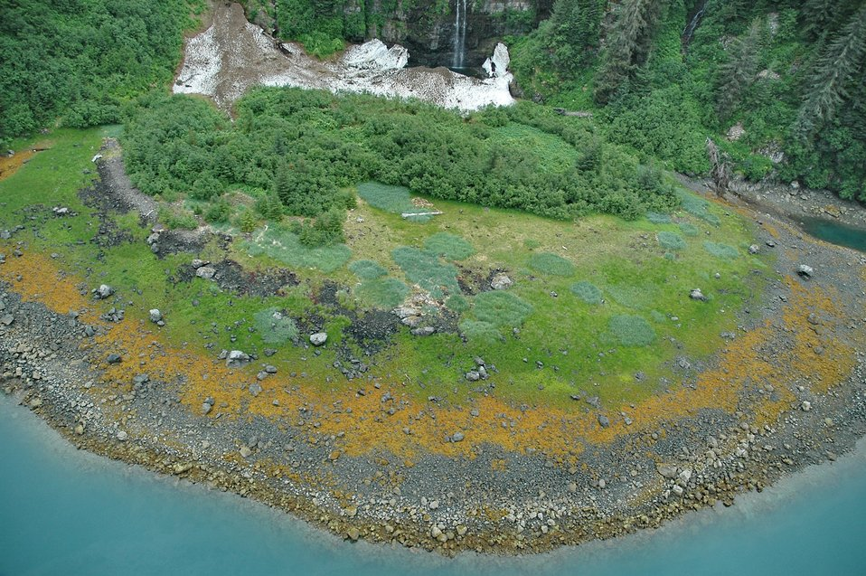 Aerial photograph.  A boulder strewn beach showing various floral zones, left over snow and ice from the winter past, and a small waterfall in the Bainbridge Passage area.