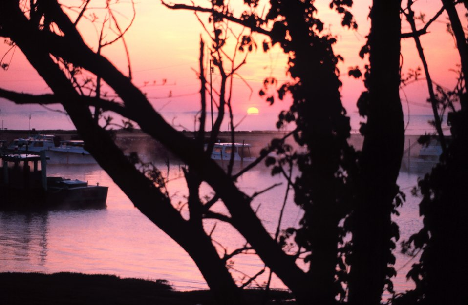 Sunrise overlooking Fishing Creek and the Chesapeake bay through the early morning fog.
