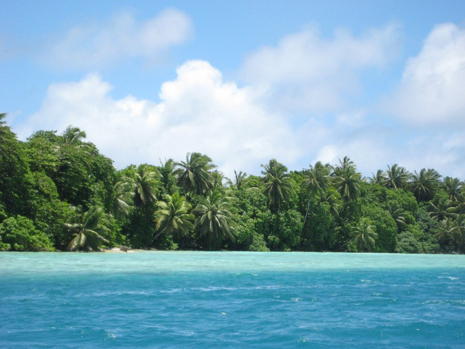 Vegetation including the ubiquitous palm trees of the tropical Pacific cover Palmyra Island and its associated offshore islets.