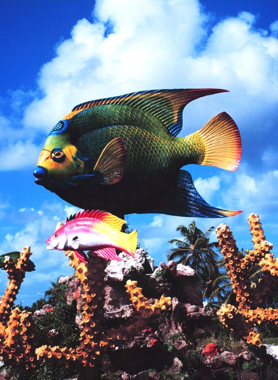 Fish art on the roadside