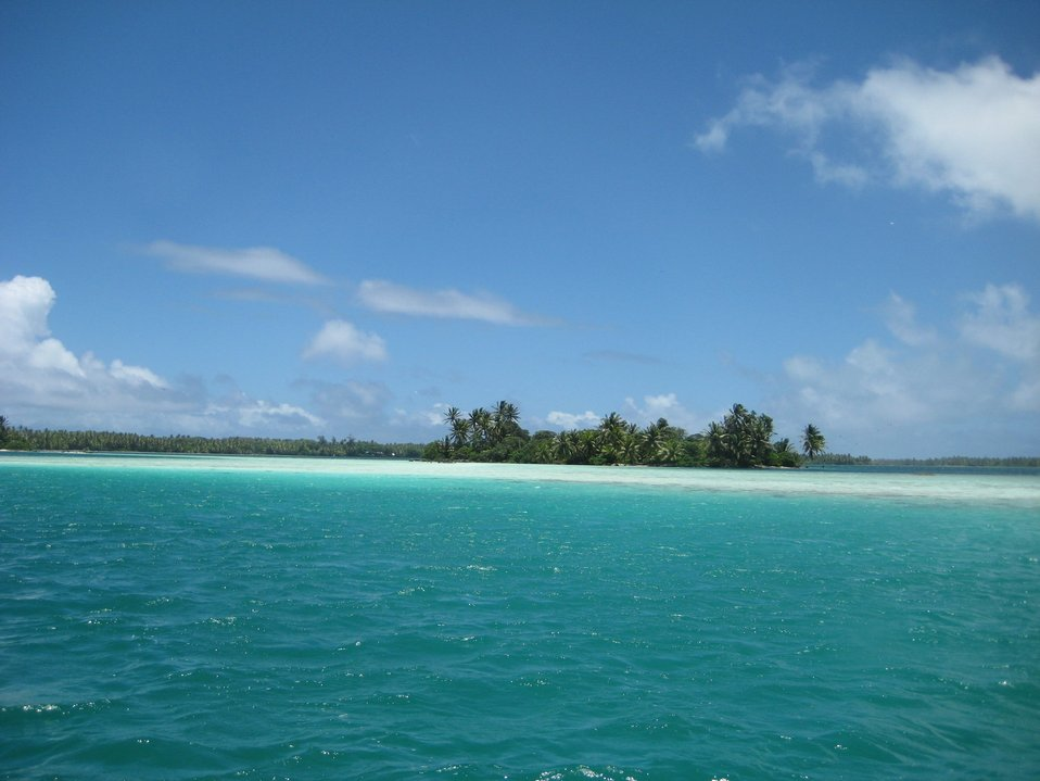 In the shallow aquamarine waters of the lagoon at Palmyra Island.