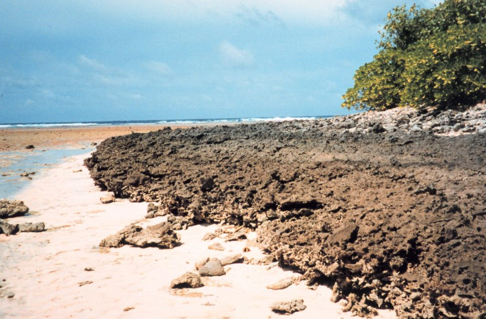 Sharp hard coral shoreline at low tide