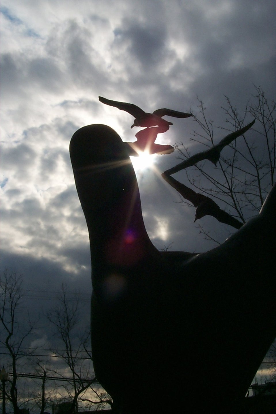 Clouds and sun silhouette the statue symbolizing NOAA's stewardship of the environment at the entrance to a NOAA headquarters building in Silver Spring.  This statue was titled 'Hand of Noah' by its sculptor, Raymond Kaskey in 1991.