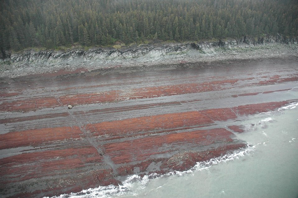 Aerial photograph. Differentially eroded sedimentary layers show linear ridges parallel to the shoreline with tidal channels cutting perpendicular channels. The red is seaweed (algae).
