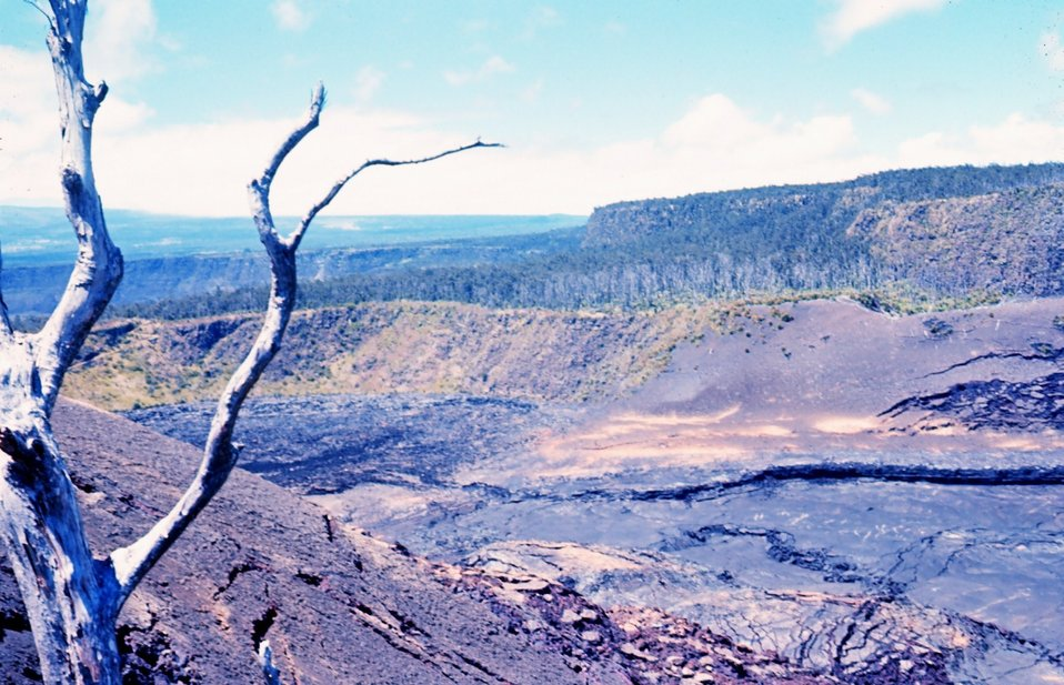 A volcanic crater with cracking floor, basalt cliffs and a dead tree in moon- like volcanic terrain.