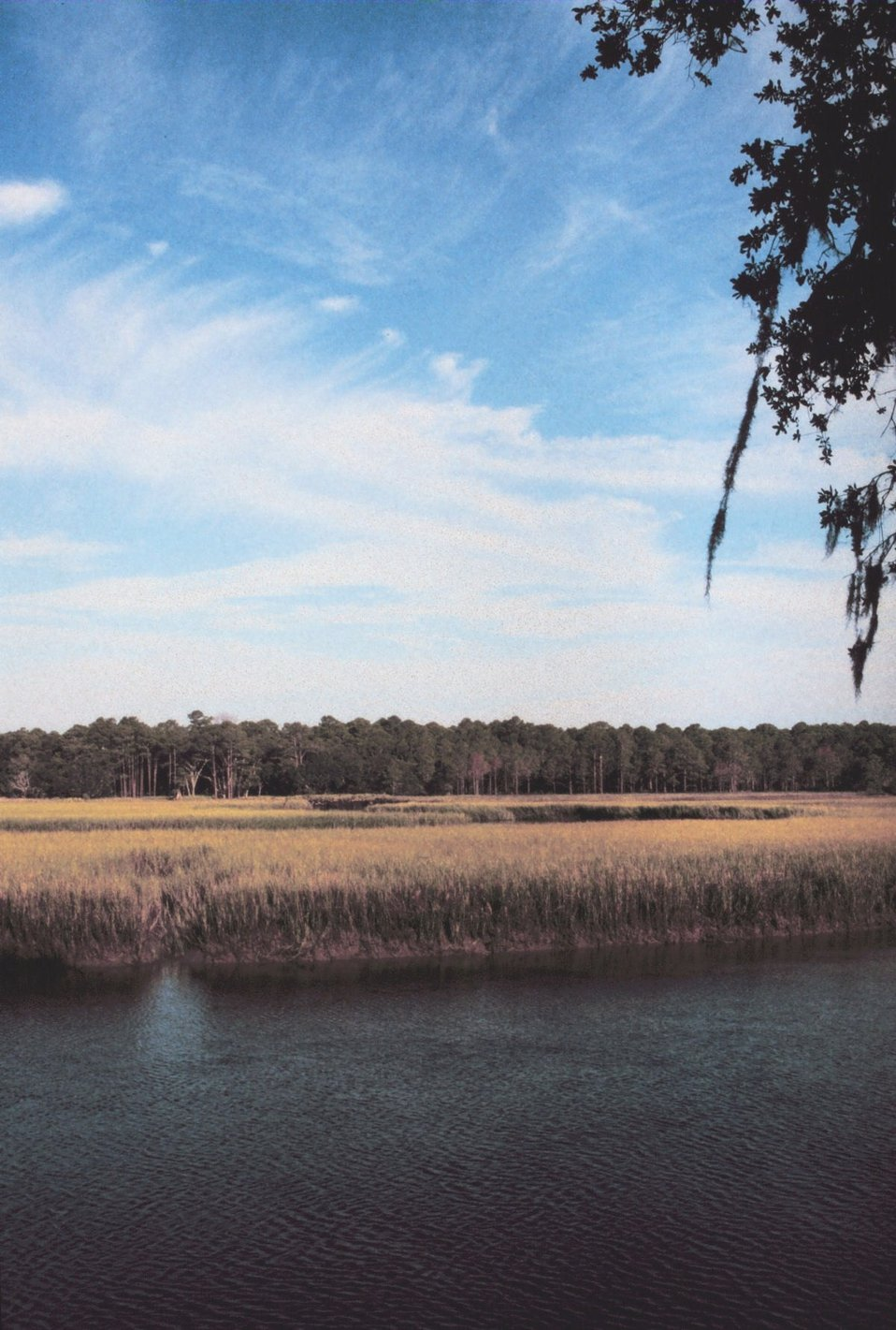 Looking west toward Sapelo from Cabretta Campground.