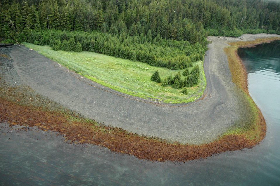 Aerial photograph.An Elrington Island Beach showing different flora zones in both the intertidal zone and on land.