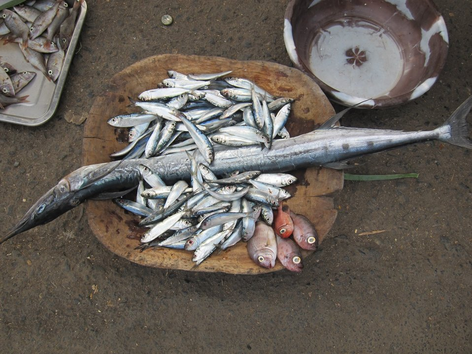 Fish for sale at Sao Tomean street market