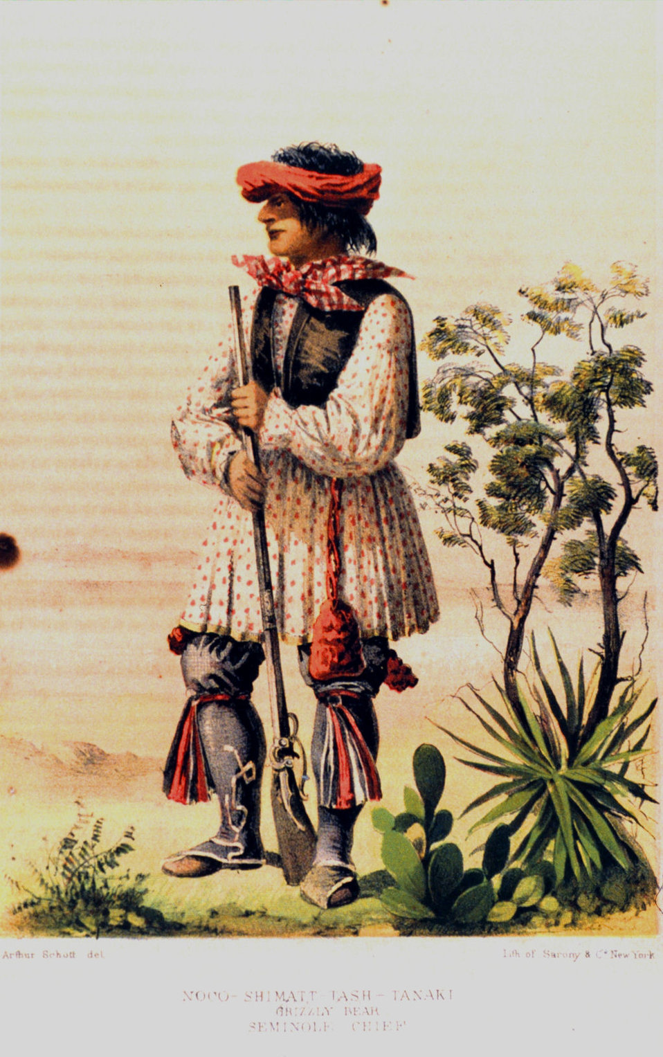 Noco Shimatt-Tash-Tanaki, Grizzly Bear, Seminole Chief.  In: 'United States and Mexican Boundary Survey.  Report of William H. Emory ....' Washington.  1857.  Volume I. P. 52. Library Call Number F786 .U45 1857.