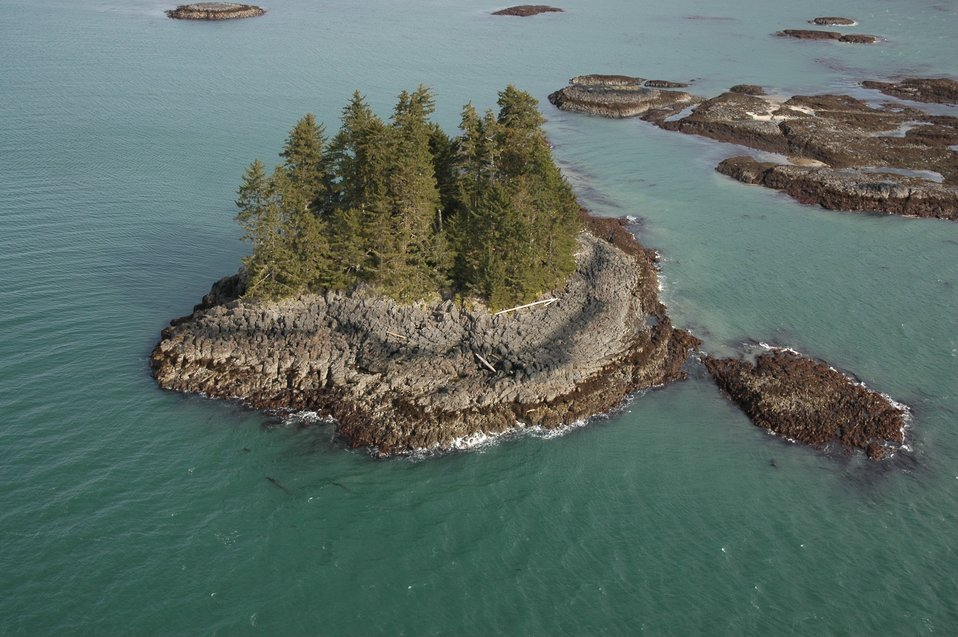 Aerial photograph. A small islet off the larger Kupreanof Island showing a unique erosive pattern in what might be columnar basalt.