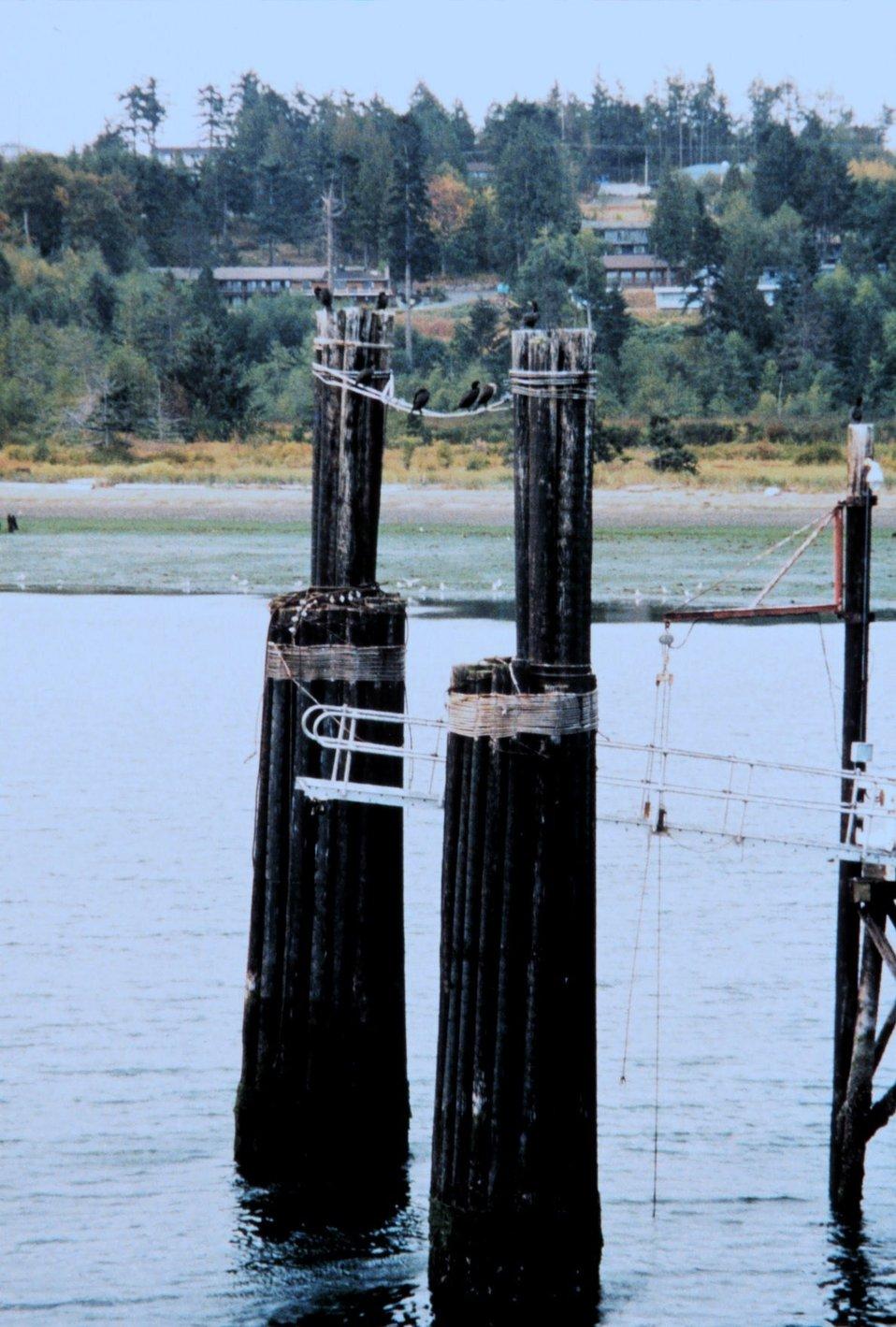 A Puget Sound ferry landing