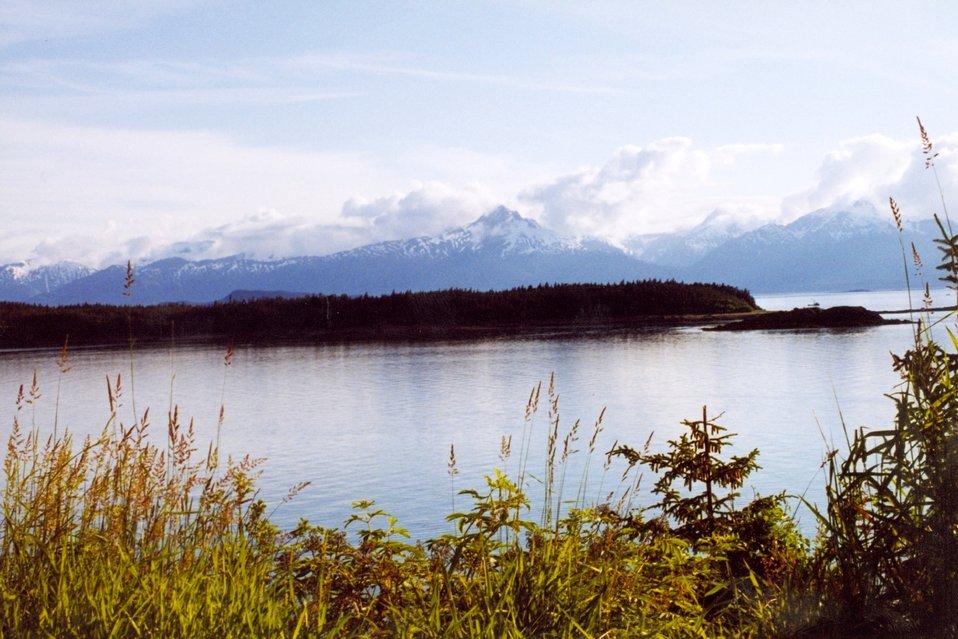 A placid bay in Southeast Alaska