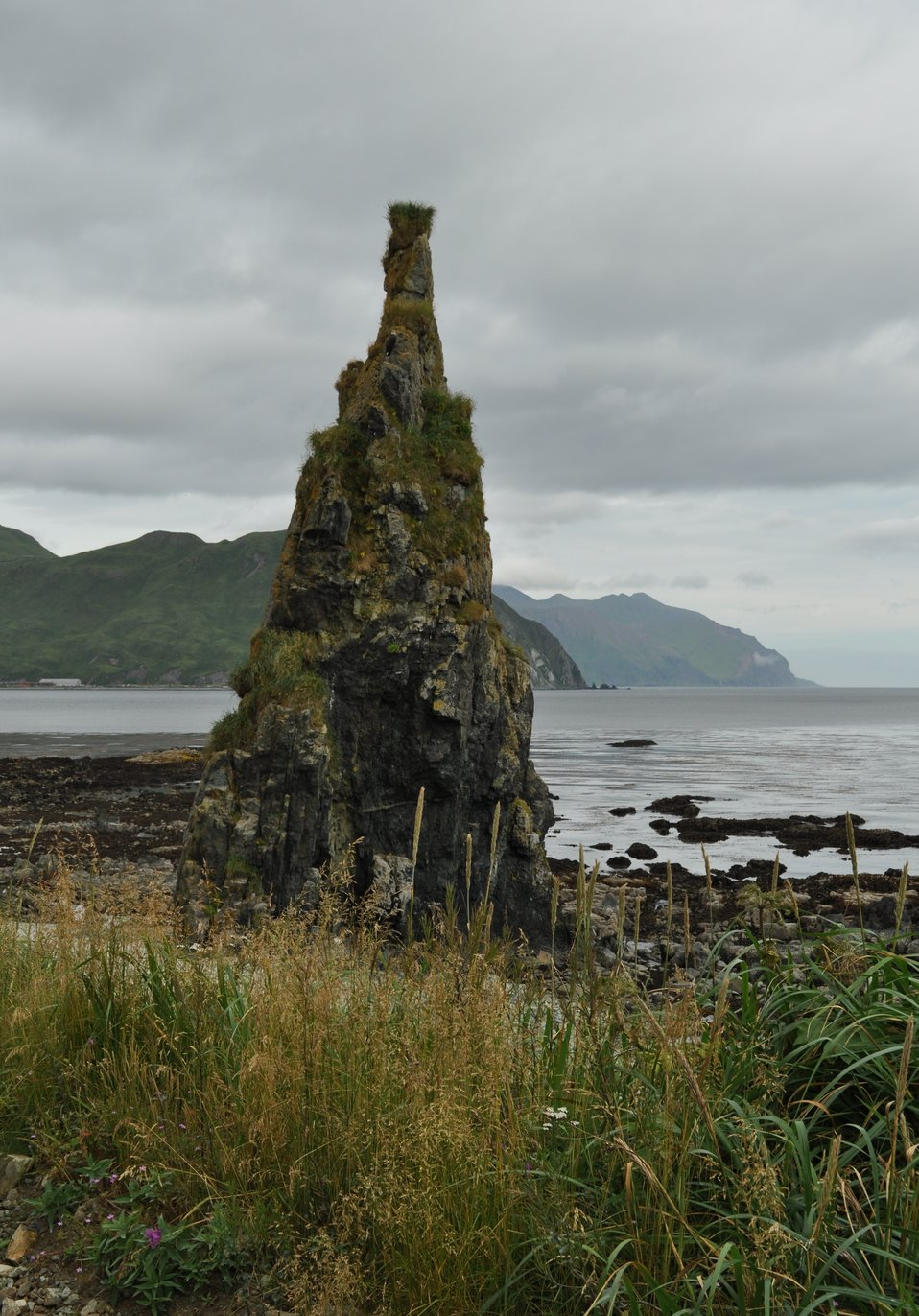 A small rock spire at the edge of the ocean.  Perhaps a small pinnacle rock prior to geological uplift.