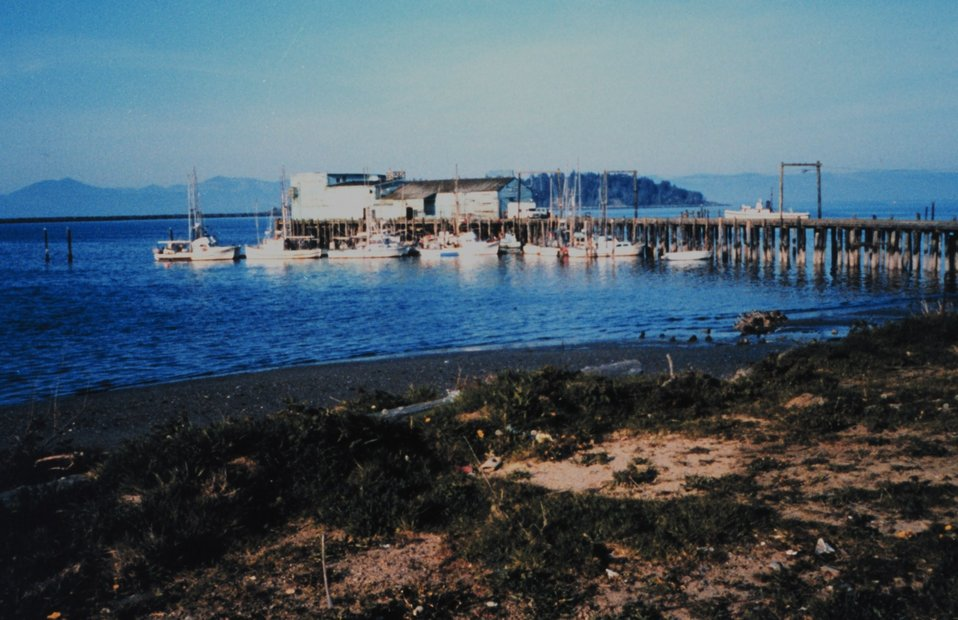 The Northwest Seafoods Company Pier.  Near the location of first Coast Survey in Washington in the early 1850's.