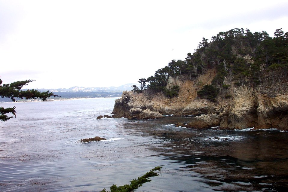 Monterey cypress on a rocky headland on the north side of Point Lobos.  Looking towards Carmel Bay and the Santa Lucia Mountains.